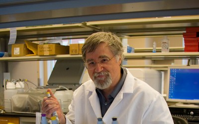 Martin Kohlmeier, M.D., Ph.D. in wet lab