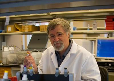 Martin Kohlmeier, M.D., Ph.D. in wet lab
