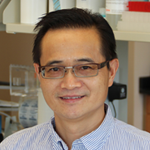 Wenhong Cao, M.D.Research Associate Professor, Nutrition Obesity, diabetes, cardiovascular disorders