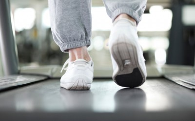 Obesity: It's Not Easy Being Lean