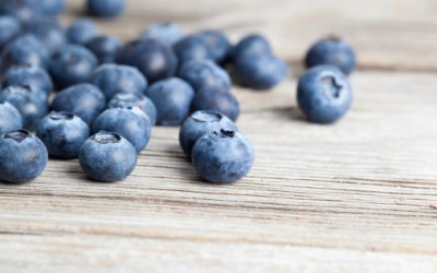 Berries and Brain: Partners in Life and Longevity