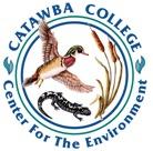 CENV Color Logo