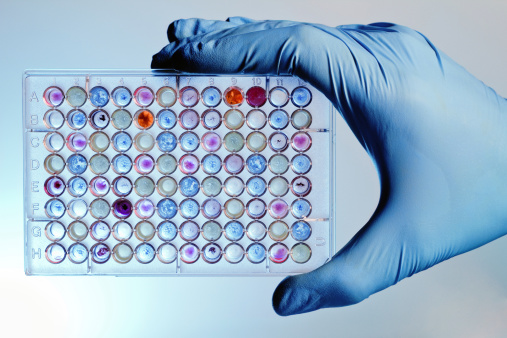 New Assay Tested for Antioxidant-based Products