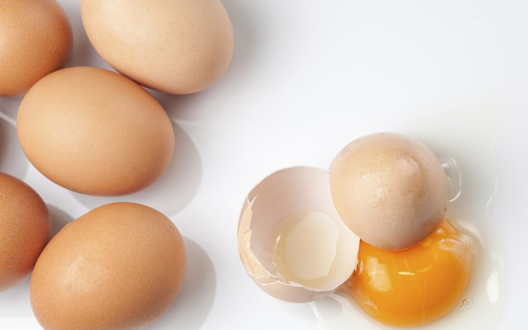 Do Eggs Cause Heart Disease?