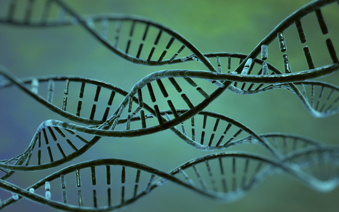 Shedding Light on Genetic Associations with Liver Cancer