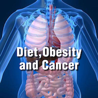 The connection between diet, obesity, and cancer: Nutrition experts explore the evidence