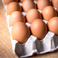 Nutrition Decisions in a Conflicting World: Eggs-actly the Issue