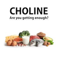 Choline: The forgotten vital nutrient we're not getting enough of